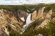 Travel Photography Prints - Lower Yellowstone Canyon Falls Print by Brian Harig