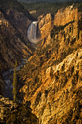 Grand Canyon Of The Yellowstone Prints - Lower Yellowstone Falls Print by Andrew Soundarajan