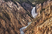 Errosion Framed Prints - Lower Yellowstone Falls Framed Print by Mark Kiver