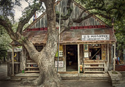 Live Oak Tree Prints - Luckenbach 2 Print by Scott Norris