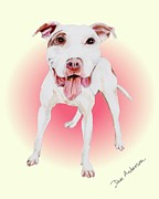 Animal Shelter Drawings - Lucky - a former shelter sweetie by Dave Anderson