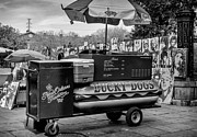 Kathleen K Parker - Lucky Dogs in Jackson Square NOLA BW