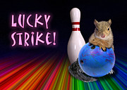 Jeanette K - Lucky Strike Squirrel