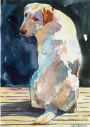 Yellow Labrador Retriever Paintings - Lucy Moon by Molly Poole