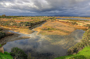 Ludo Photos - Ludo Nature Reserve by Nigel Hamer