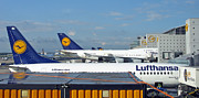 Destinations Digital Art Posters - Lufthansa Birds At Frankfurt Airport Poster by Ausra Paulauskaite