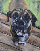 Boxer Puppy Painting Framed Prints - Lugnut Framed Print by Donna Tuten