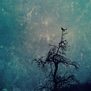 Fantasy Tree Art Print Photo Posters - Lullaby Poster by Danny Van den Groenendael
