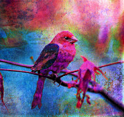 Digital Collage Prints - Luminous Print by Robin Mead