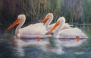 Nature Scene Originals - Luminous White Pelicans by Roxanne Tobaison