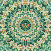 Deborah Smith - Luna Moth Kaleidoscope