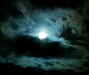 Lunar Eclipse2 Print by Sherri Krause