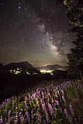 Gunnison Prints - Lupine Blanket Under The Stars Print by Mike Berenson