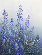 Warbler Paintings - Lupine by Mike Stinnett