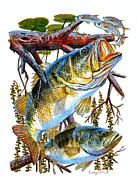 Trout Paintings - Lurking Bass by Carey Chen