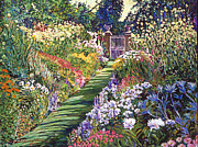 Gardenscapes Painting Framed Prints - Lush Floral Pathway Framed Print by David Lloyd Glover