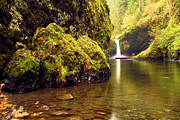 Eagle Creek Prints - Lush Green Punchbowl Print by Adam Jewell