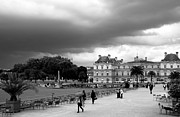 Black And White Paris Metal Prints - Luxembourg Gardens 2bw Metal Print by Andrew Fare