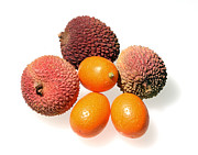 Exotic Fruit Prints - Lychees and Kumquats  Print by Nicholas Burningham