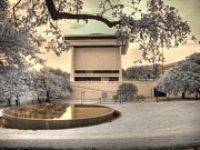 Nixon Art - Lyndon B Johnson Presidential Library by Jane Linders