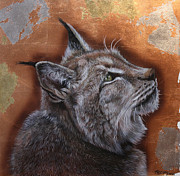 Lynx Painting Posters - Lynx Face Poster by Susana Falconi