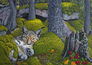 Peaceful Places Paintings - Lynx in the sun by Veikko Suikkanen