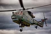 Search And Rescue Photos - Lynx by Paul Job