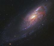 M106 Posters - M106, Spiral Galaxy In Canes Venatici Poster by Robert Gendler