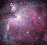 Orion Nebula Art - M42, The Orion Nebula by Robert Gendler
