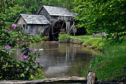 John Haldane Prints - Mabry Mill in May Print by John Haldane