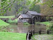 Diannah Lynch - Mabry Mill in the Spring