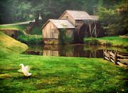 Grist Mill Prints - Mabrys Mill and the Welcoming Committee Print by Darren Fisher