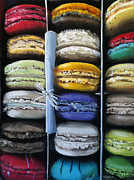 Rainbow Metal Prints - Macaroon Rainbow Metal Print by Cristine Kossow