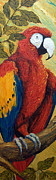 Parrot Print Paintings - Macaw I by Paris Wyatt Llanso
