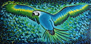 Macaw Art Paintings - Macaw In Flight by Preethi Mathialagan