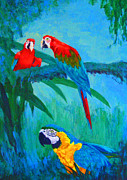 Blue And Yellow Macaw Prints - Macaw Trio Print by Margaret Saheed