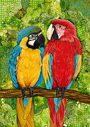 Amazon Parrot Paintings - Macaws by Darlene Fletcher
