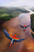 Kevin Hill Framed Prints - Macaws in Flight Framed Print by Kevin Hill