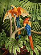 Tropical Rainforest Art - Macaws Pair by Laura Regan