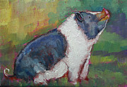 Pig Prints - Mack The Pig Print by Carol Jo Smidt