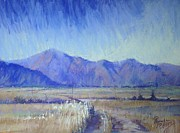 Open Pastels - Mackenzie Country by Pamela Pretty