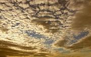 Mackerel Sky Golden Print by Amanda Lee Tzafrir