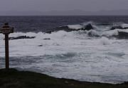 Qing - Madrock Wave
