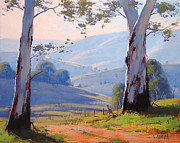 Eucalyptus Paintings - Magestic Gums by Graham Gercken