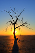 Salton Sea Prints - Magic At The Salton Sea Print by Bob Christopher