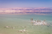 Jordan Photo Originals - Magic colors of the Dead Sea by Sergey Simanovsky