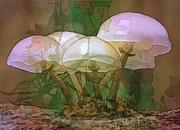 Magic Mushrooms Print by Ursula Freer