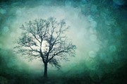 Misty Photo Prints - Magic Tree Print by Priska Wettstein