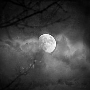 Melissa Bittinger - Magic Under The Moon