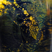Gold Glass Art Prints - Magical Dust Print by Gaby Tench